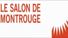 Salon de Montrouge 2013