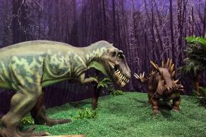 Eustreptospondylus-y-huayangosaurus-DR