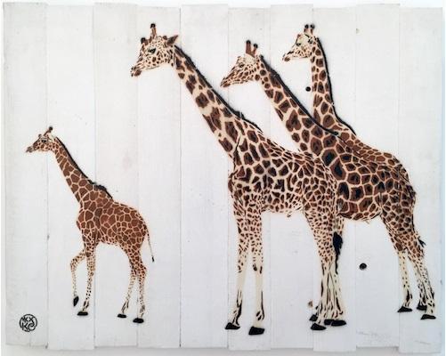 mosko girafe exposition gca gallery artistik rezo paris