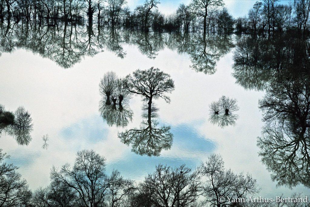 Terra-Magnifica-Yann-Arthus-Bertrand-Atelier-des-Lumières