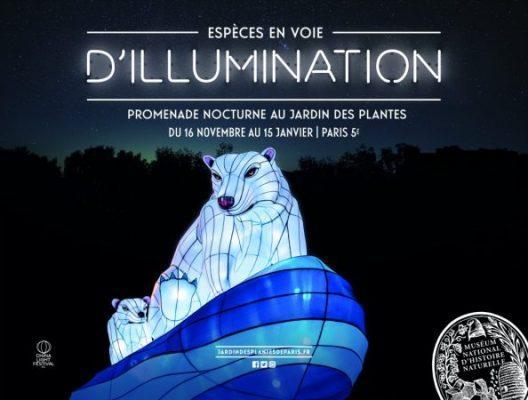 Especes En Voie D Illumination Jardin Des Plantes Artistikrezo