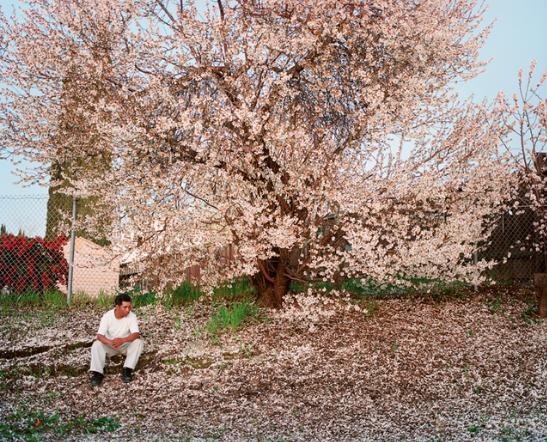 Larry-Sultan-Antioch-Creek-Homeland-Galerie-Thomas-Zander