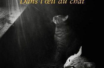 Mélani-Le-Bris-Dans-loeil-du-chat