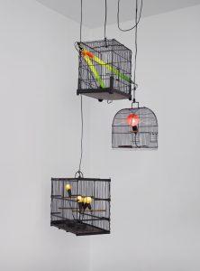Laurent-Perbos-Canaris-Rouge-gorge-Inséparables-2014-Courtesy-Galerie-Baudoin-Lebon © Bertrand-Hugues-ADAGP-Paris-2020