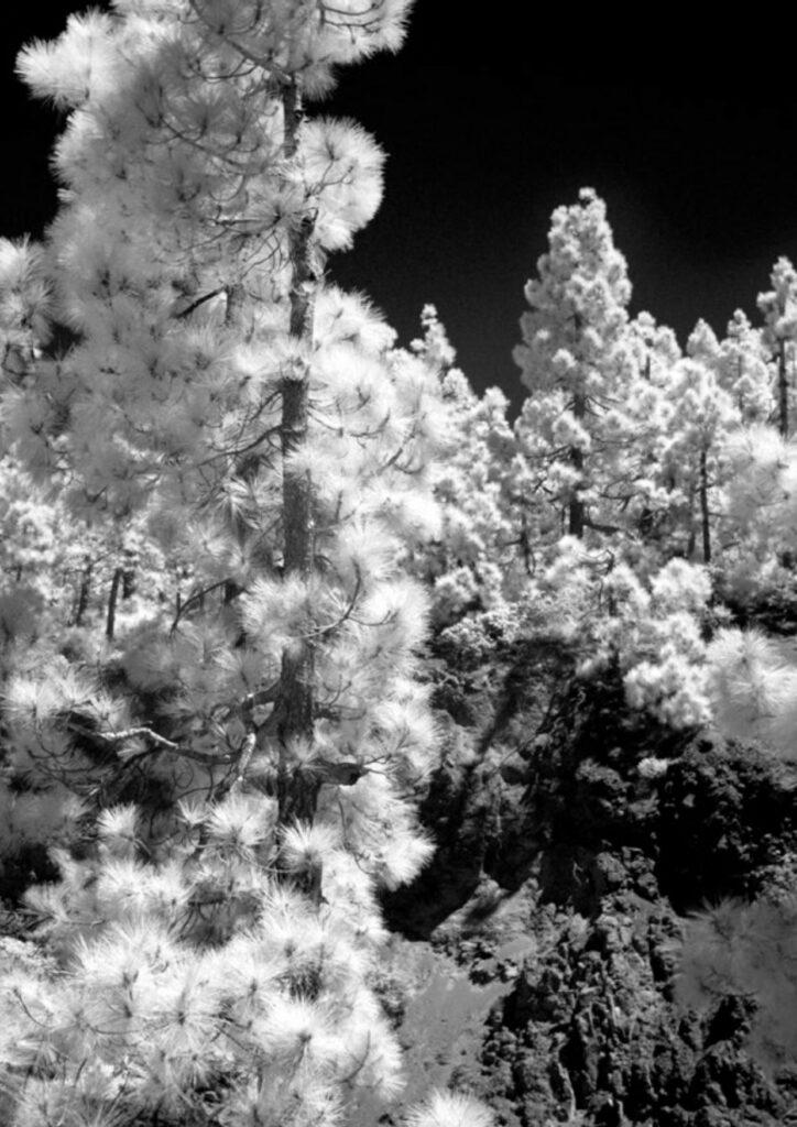 """Hugo Deverchère Cosmorama 2017, Vidéo 4K 2.39:1, son 5.1 21'45""""© Produit par Le Fresnoy - Studio national des arts contemporains Avec le soutien de Neuflize OBC"""